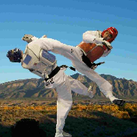 District Taekwondo Academy Sirohi's profile